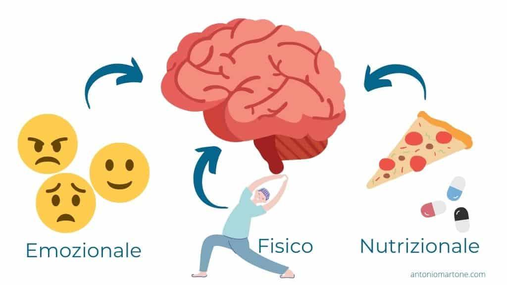 Le aree che agiscono sul sistema nervoso centrale